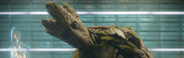 James Gunn Talks Vin Diesel's Groot in Guardians of the Galaxy
