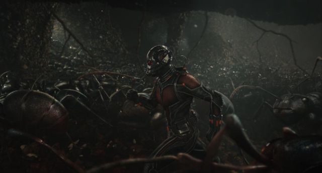 Witness Ant-Man's Macro Photography in New Behind-the-Scenes Video.