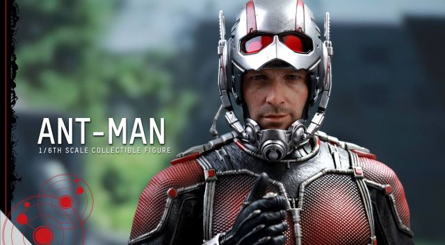 Updated Hot Toys Ant-Man Photos Reveal Tiny Paul Rudd
