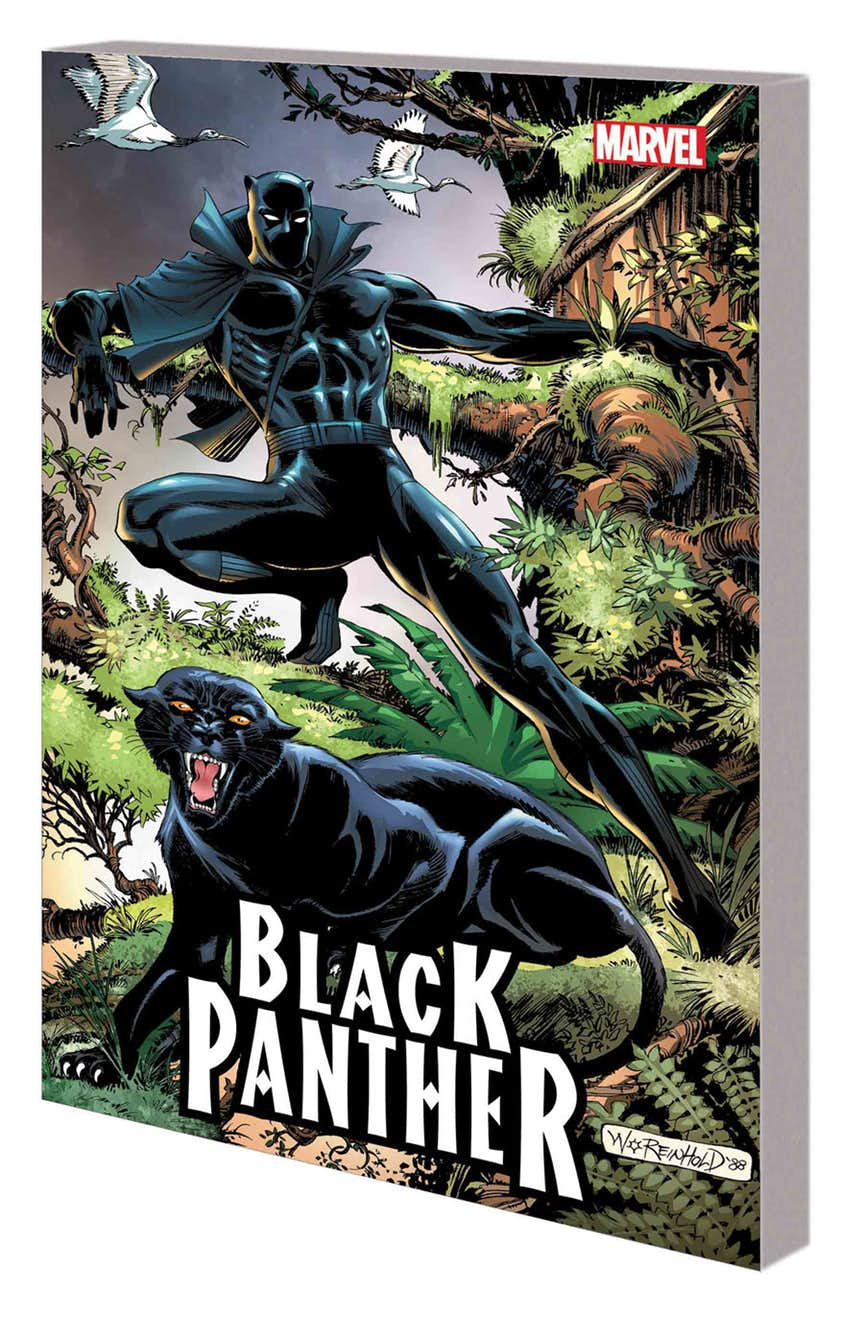 BLACK PANTHER: PANTHER'S QUEST TPB
